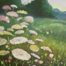 Lacy Fields (sold)