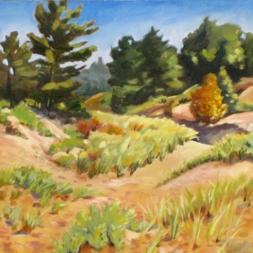 Bluewater Dunes (sold)